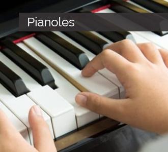 pianoles deventer twello voorst wilp diepenveen schalkhaar